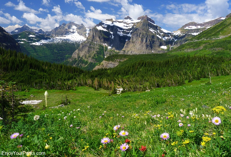 Brown Pass (west view), Glacier National Park
