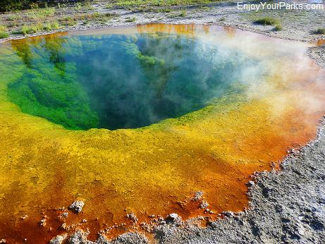 Morning Glory Pool, Upper Geyser Basin, Old Faithful Area, Yellowstone National Park