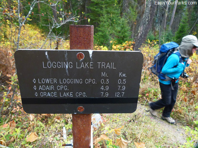 Logging Lake Trail, Glacier National Park