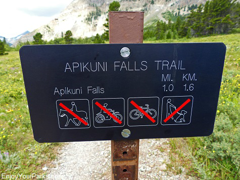 Apikuni Falls Trail, Glacier National Park