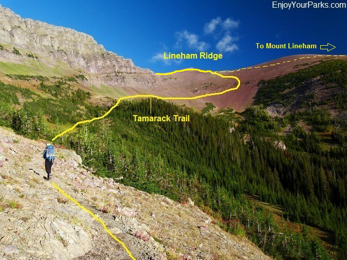 Tamarack Trail, Waterton Lakes National Park