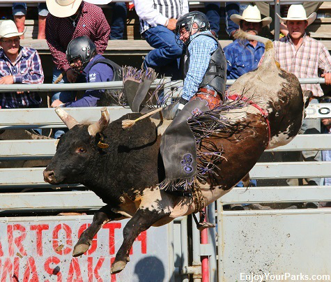 Rodeo of Champions in Red Lodge Montana