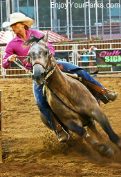 Deadwood Rodeo, South Dakota
