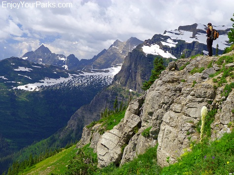 Boulder Pass Trail, Brown Pass, Glacier National Park