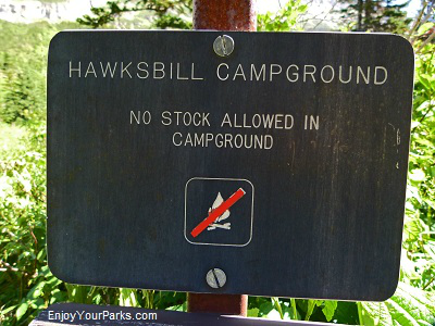 Hawksbill backcountry campground, Glacier Park
