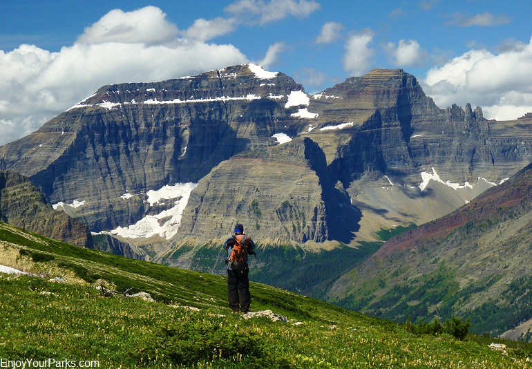 View of Mount Cleveland from Lee Ridge, Glacier National Park.