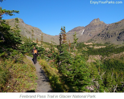 Firebrand Pass Trail, Glacier National Park
