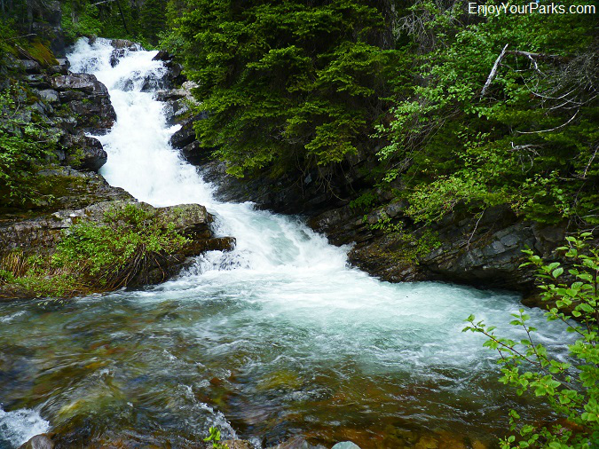 Rose Creek, Otokomi Lake Trail, Glacier National Park