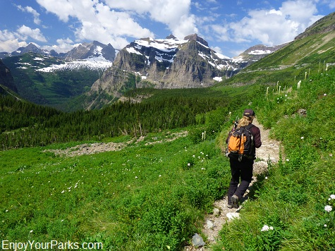 Boulder Pass Trail, Hike to Brown Pass, Glacier National Park