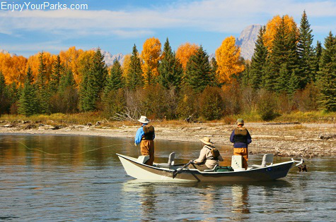 Fly fishing on the Snake River, Wyoming