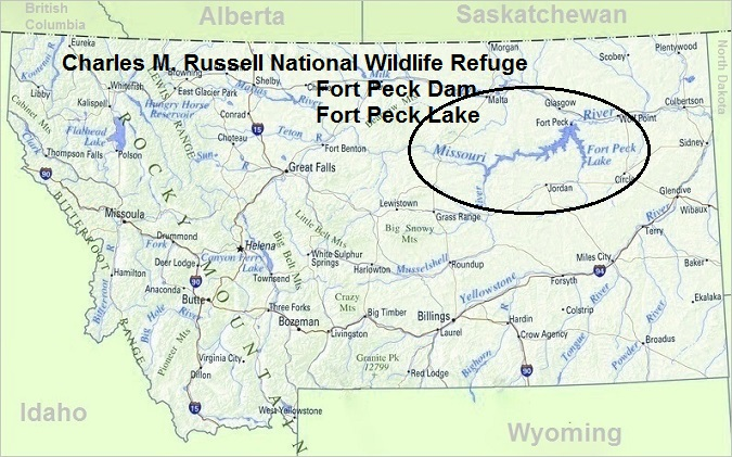 Top Things To Do In Montana:  Charles M. Russell National Wildlife Refuge
