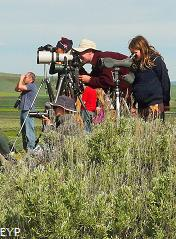 Wildlife viewers and photographers, Lamar Valley, Yellowstone National Park