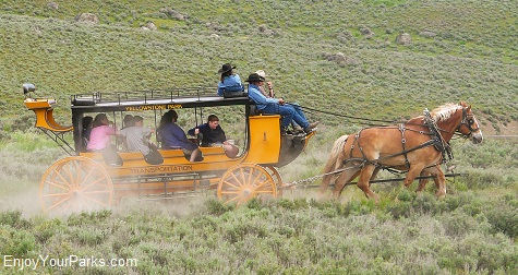 Stagecoach at Roosevelt Lodge, Tower / Roosevelt Area, Yellowstone National Park