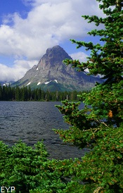 Two Medicine Area, Glacier National Park