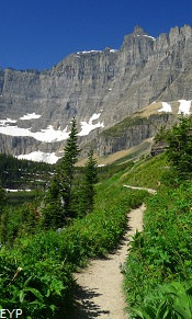 Iceberg Lake Trail, Many Glacier Area, Glacier National Park