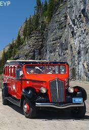 Red Bus, Going To The Sun Road, Glacier National Park