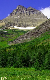 Mount Wilbur, Swiftcurrent Pass Trail, Glacier National Park