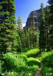 Upper Two Medicine Lake Trail, Glacier National Park