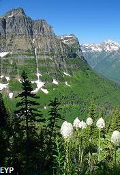 Mount Oberlin, Going To The Sun Road, Glacier National Park