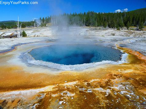 Crested Pool, Upper Geyser Basin, Old Faithful Area, Yellowstone National Park