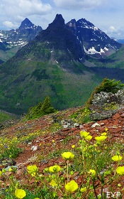 Two Medicine Pass, Two Medicine Area, Glacier National Park