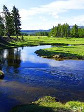 Gibbon River, Norris Junction Area, Yellowstone National Park